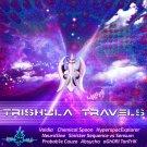 VA - Trishula Travels - 2021 - Sonic Tantra Psytrance Music Records.jpg